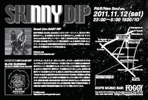 skinnydip_2011_11_03B.JPG